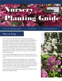 Nursery Planting Guide